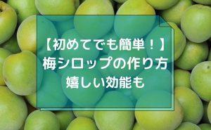 【初めてでも簡単!】梅シロップ(梅ジュース)の作り方と嬉しい効能